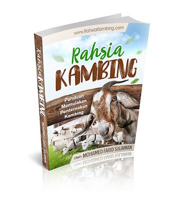 ebook cara bisnes kambing