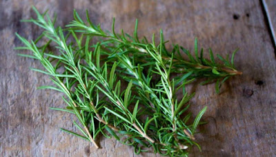 Το βότανο που κρύβει το μυστικό της μακροζωίας - Τι έδειξε έρευνα