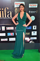 Laxmi Rai in a Deep neck Beautiful Green Gown Cute Actress Laxmi Rai ~  033.JPG