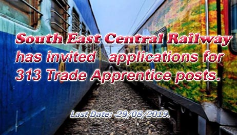 South East Central Railway has invited applications for 313 Trade Apprentice posts.