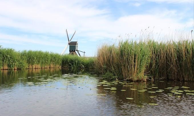 Varen langs Kinderdijk: huur een sloep in de Alblasserwaard