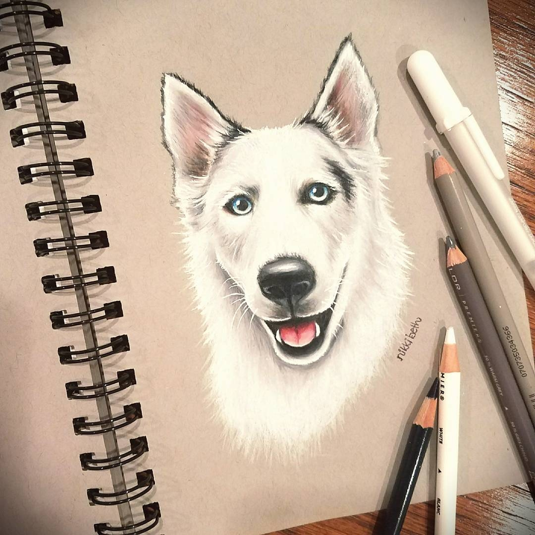 08-Niah-Nikki-Beth-Animal-Portrait-Drawings-in-different-Styles-www-designstack-co