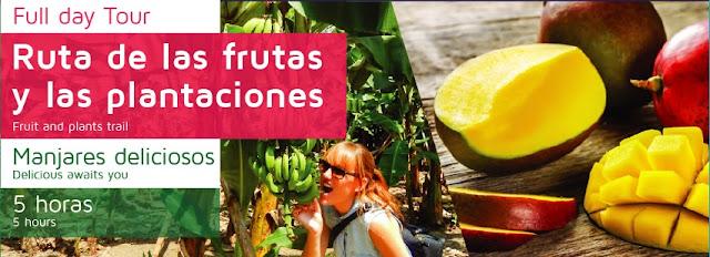 Rota de las plantaciones del Guayas