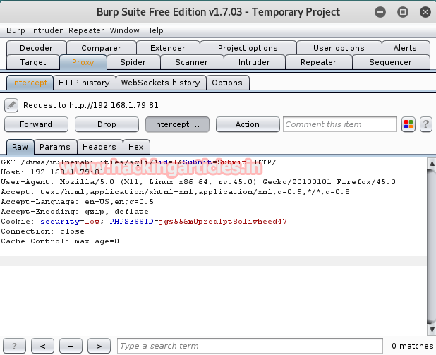 how to use burp suite to hack website