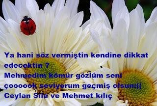 Ceylan Sıla'nın Mehmet Kılıç'a Mesajı