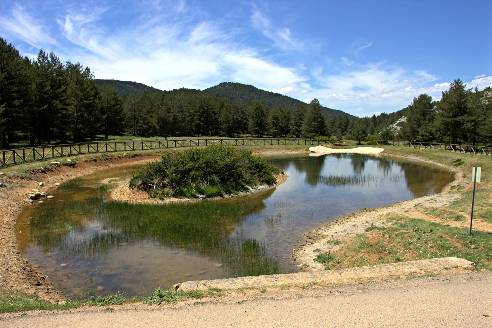 nacimiento rio tajo