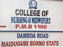 College of Nursing & Midwifery Maiduguri Form 2020/2021