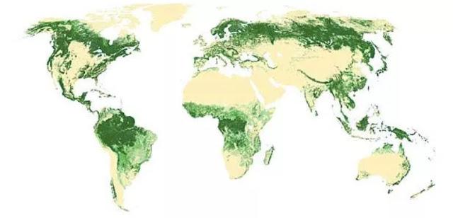 Peta tutupan hutan seluruh dunia