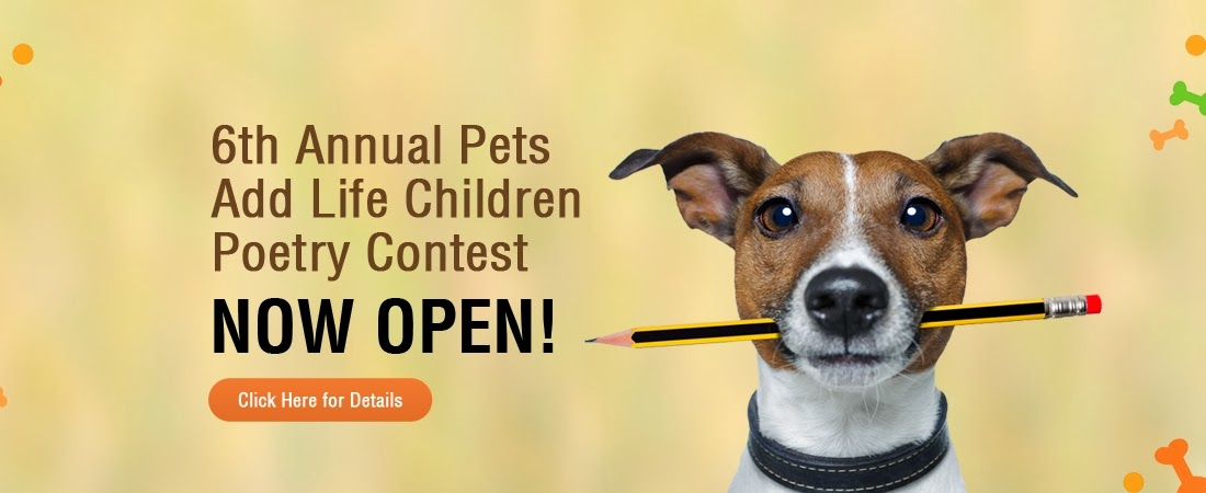 Pet Blog By Bocci @ Bocci's Beefs: Pets Add Life (PAL's) 6th