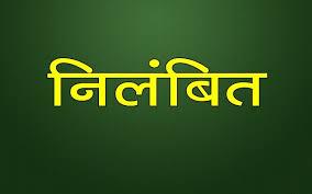 सफाई कार्य में लापरवाही बरतने पर प्रभारी सफाई दरोगा निलंबित | Shivpuri News