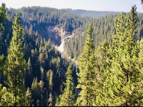 Blick in ein Tal im Yellowstones