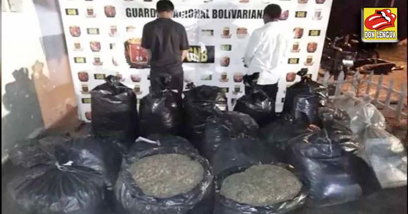 Portaban 250 kilos de Marihuana y fueron detenidos en Mérida