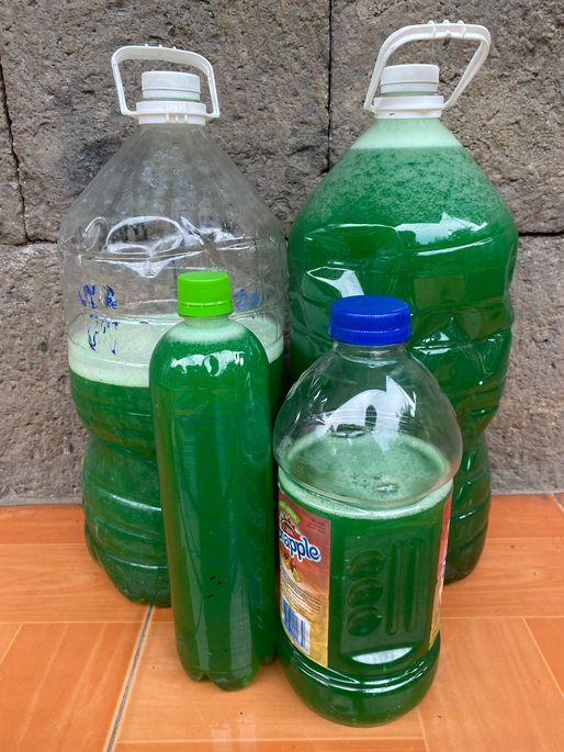 Wise Cleaner DIY kit dishwashing liquid final product