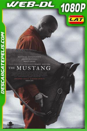 The Mustang (2019) WEB-DL Latino – Ingles