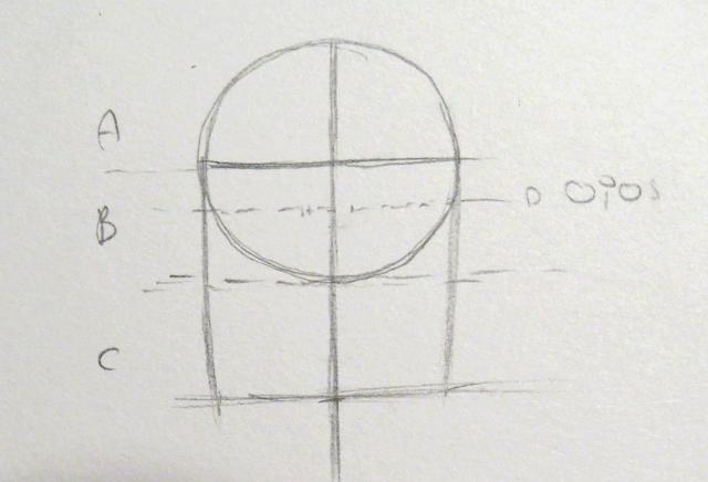 Círculo y límite del largo de la cabeza cerrado por dos líneas semirectas que forman la estructura base de la cabeza