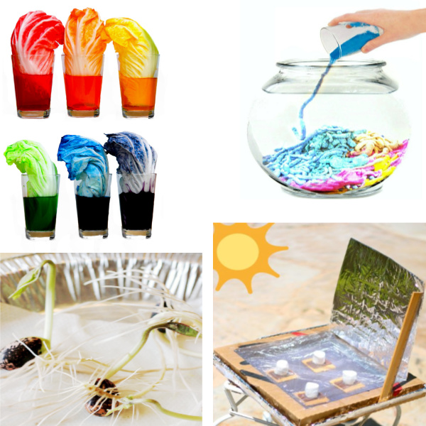 keep the kids engaged in learning this summer with these science experiments great for all ages. #summerscienceexperimentsforkids #summerscience #summerscienceactivities #summerscienceexperimentskids #summerexperimentsforkids #scienceexperimentskids #sciencefairprojects #growingajeweledrose