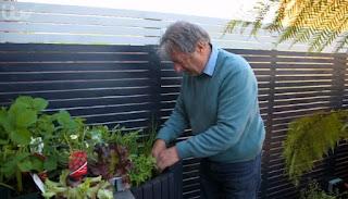 Alan and herbs