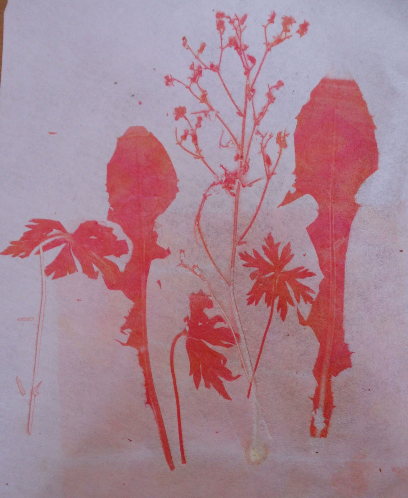 ... then turned over (they are covered in dye) and printed onto fabric