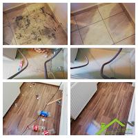 Curățenie Înainte Și După Mutare Timișoara