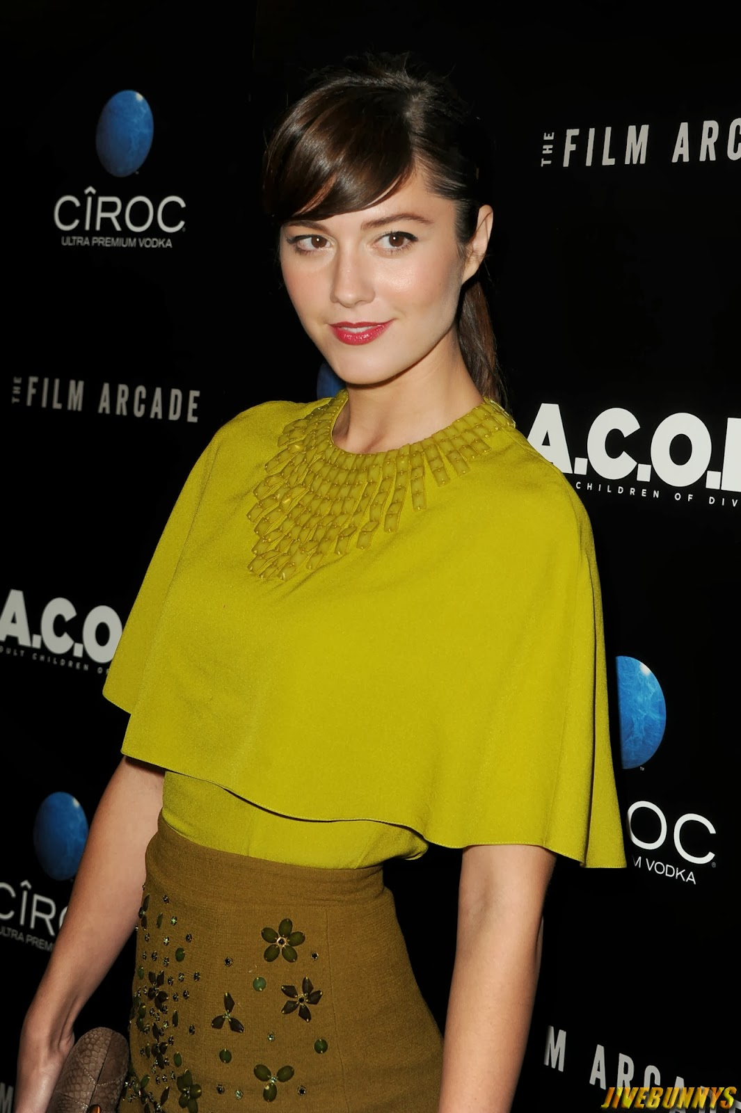 mary elizabeth winstead panties