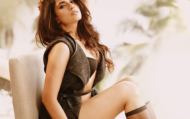 Richa Chadha looks for subtleties of her grumbling against Payal Ghosh from NCW; Says she recorded it before the last mentioned