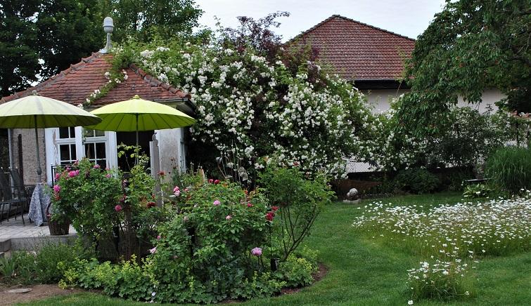 Impressionen aus einem Rosengarten