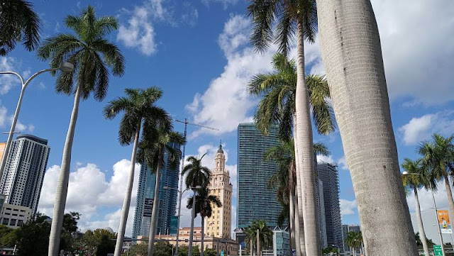 freedon tower miami