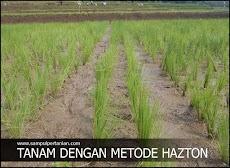 METODE HAZTON (Mengenal Penemu, Sejarah dan Alasannya)