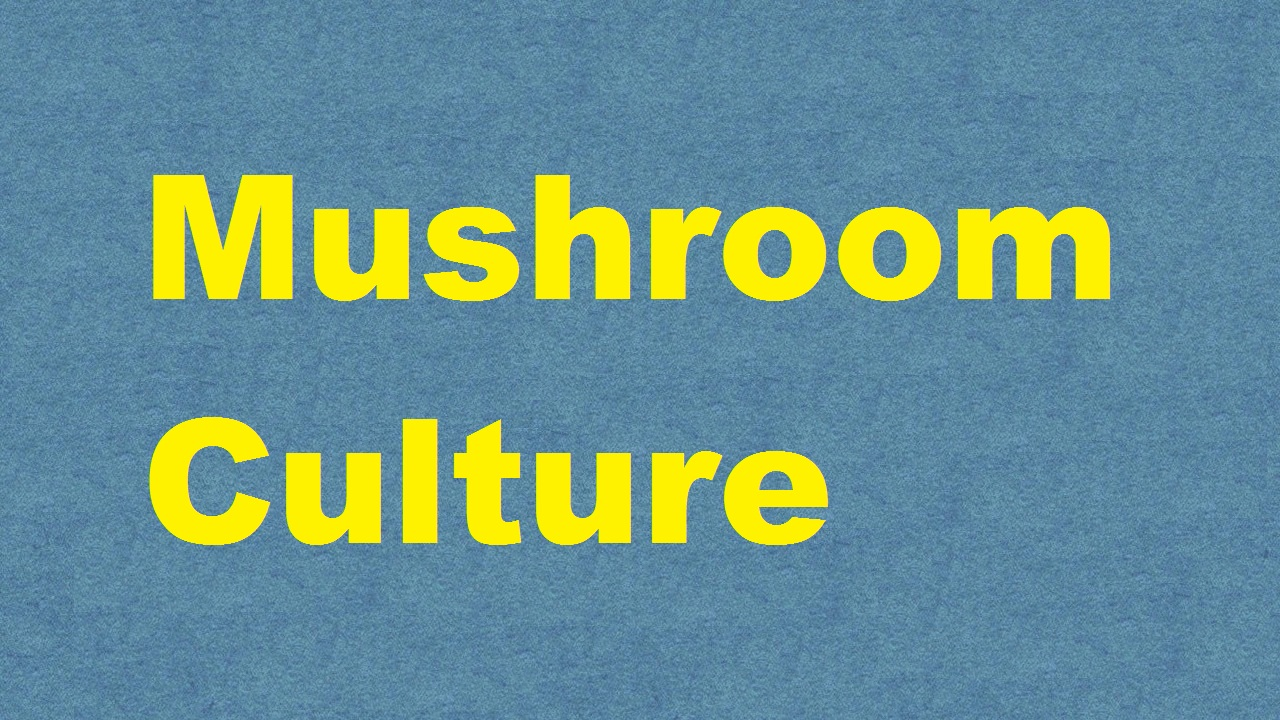 Mushroom Culture ICAR E course Free PDF Book Download e krishi shiksha