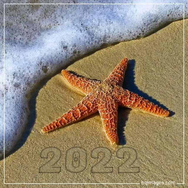 happy new year beach images 2022