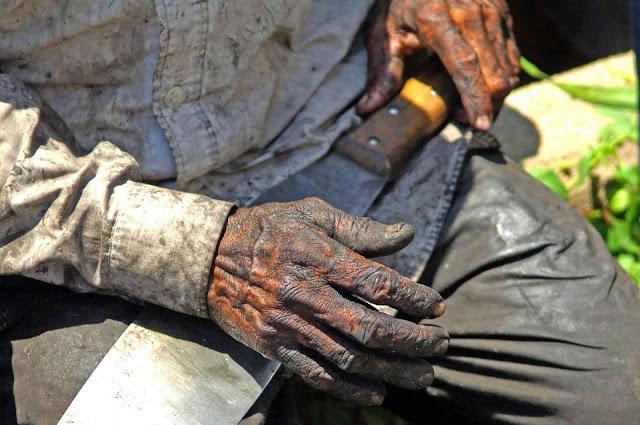 MPT e entidades divulgam nota de repúdio à demissão de chefe de combate ao trabalho escravo