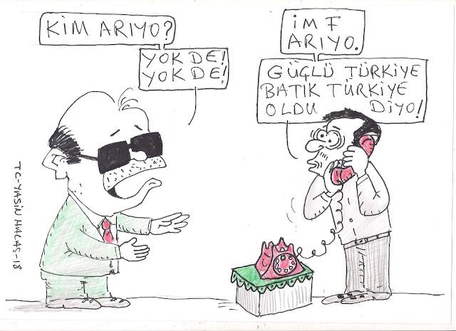 imf karikatürü