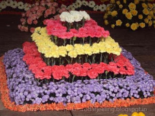 International_Flower_show_images