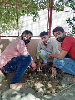 जन्म दिवस पर किया मंदिरों पर वृक्षारोपण
