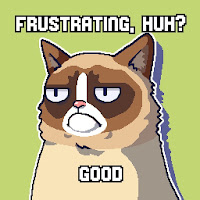 Grumpy Cat, Frustrating meme
