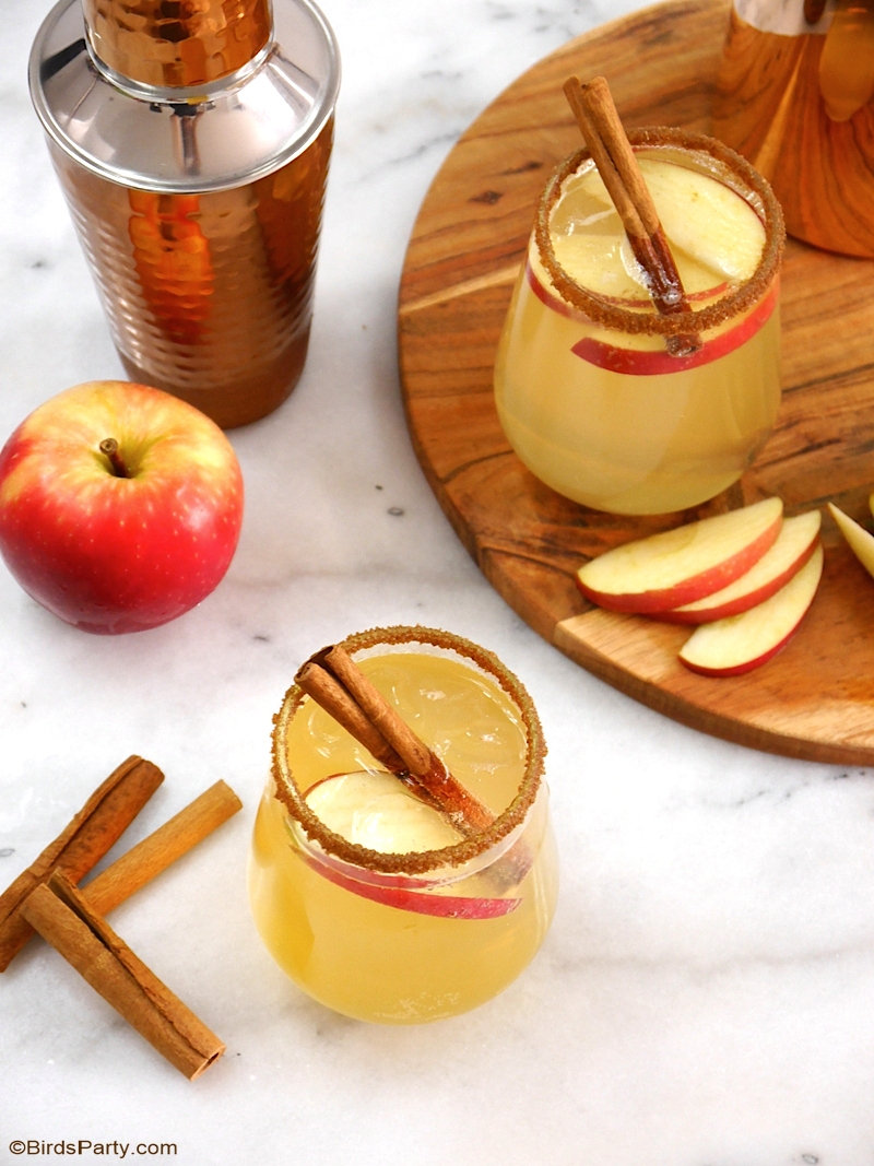 Apple and Cinnamon Punch Cocktail  - an easy, quick and delicious drink recipe for fall gatherings or Thanksgiving! Make it in a shaker or a make a big batch in a punch bowl! by BirdsParty.com @birdsparty #fall #autumn #fallrecipes #fallcocktails #apples #applerecipes #applecocktail #applecinnamon #applepunch #applecider #applerecipe #appledrink #fallcocktails #thansgivingcocktails