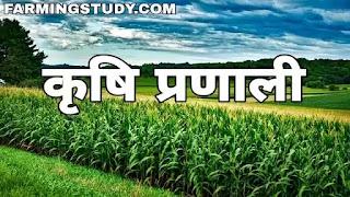 कृषि प्रणाली क्या है इसकी परिभाषा एवं कृषि प्रणाली कितने प्रकार की होती है?, krishi pranali kya hai, कृषि प्रणाली की परिभाषा, कृषि प्रणाली के प्रकार