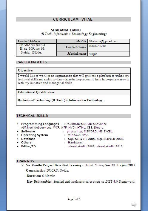 freelance web developer resume sample format in word