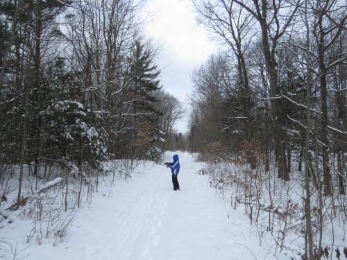 hiker on snowy trail