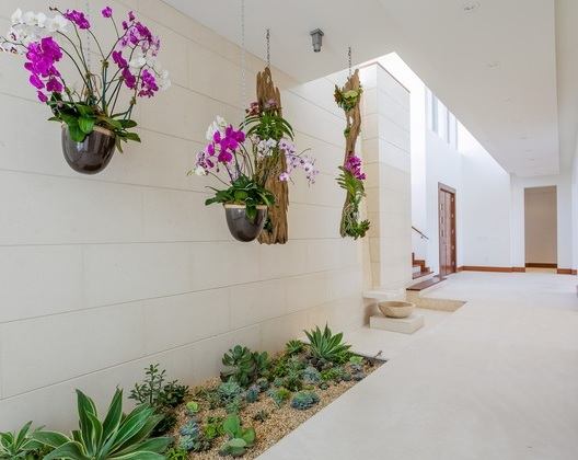 Indoor Garden Populer Di Indonesia