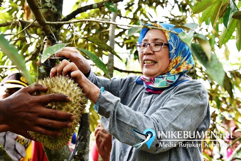 Dagingnya Manis Legit, Sayangnya Durian Montong Sadang Kurang Promosi