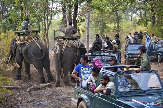 Safari in Jim Corbett