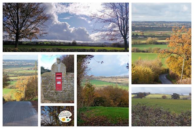 Foxham walk collage