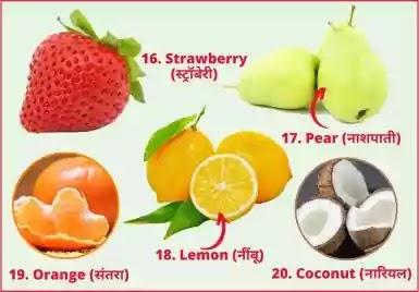 20 fruits name in english and hindi
