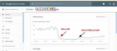 trafik anjlok karena lepas custom domain