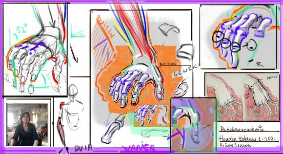 handen tekenen, hoe teken je handen, hand tekenen, anatomie van de hand, handgebaar tekenen,charachter tekenen, houding van de hand