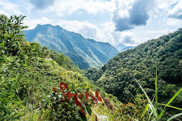 Batad-Ifugao-Luçon-Philippines