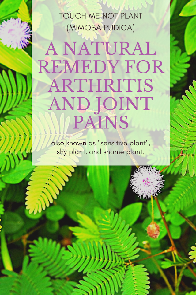 A Natural Remedy For Arthritis and Joint Pains