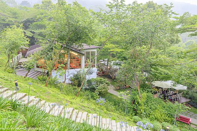 MG 3677 - 台中老字號景觀餐廳推薦,隱身山區的美麗桃花源,還有火鍋、排餐與下午茶可以享用!