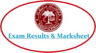 Aligarh Muslim University Result 2020